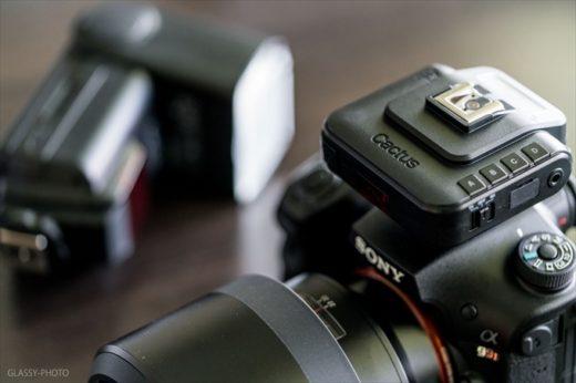 結婚式 カメラマン フラッシュ オフカメラ ライティング RF60X V6llS カクタス