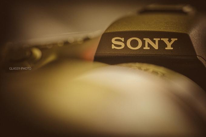 当日動画エンドロールはソニーのα99で撮る一眼動画 結婚式 写真 カメラマン