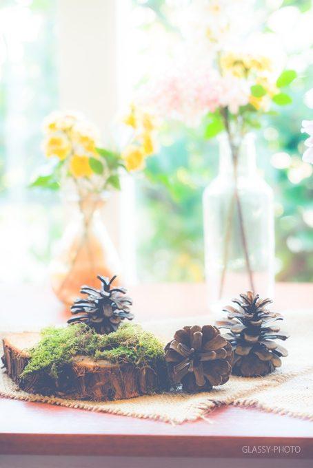 松ぼっくりと切り株と花瓶に入ったカラフルな花で飾ります
