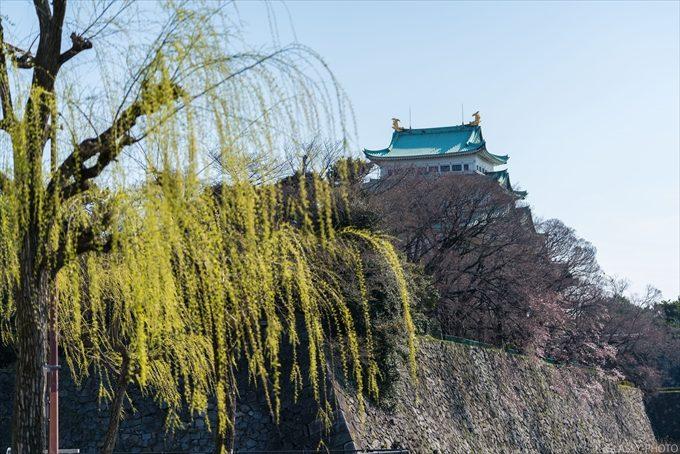 緑のヤナギの向こうに見える名古屋城