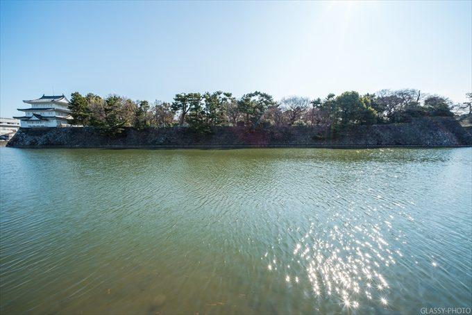 広いお堀が特徴的な名古屋城であります