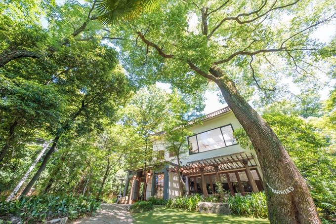 大きな木と緑に囲まれたナンザンハウスさんの外観は美しすぎます(・∀・) 愛知県 名古屋市 昭和区 汐見町 ザ ナンザンハウス THE NANZAN HOUSE 結婚式 二次会 写真 カメラマン