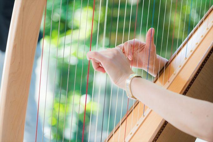 大きなハープが奏でられチャペルの雰囲気がこれまたイイ!(・∀・)