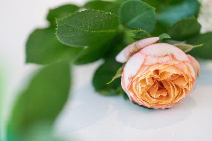 新郎さんがチャペル入場時にバラを集めて作る「ダーズンローズ」