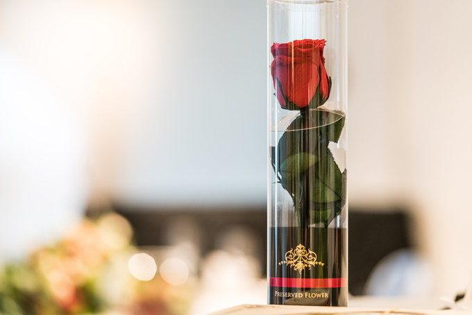 一本の赤いバラに込められた想い 素敵な贈りものに感謝です
