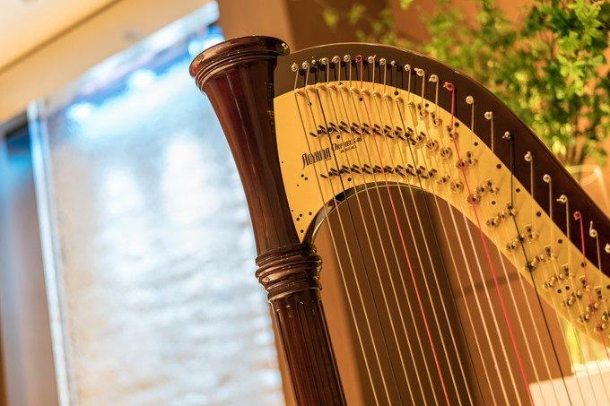ハープの奏でる音色はチャペル式にとても合うのですよね