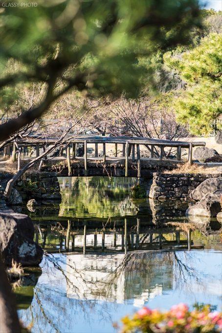池に反射する橋も素敵ですね