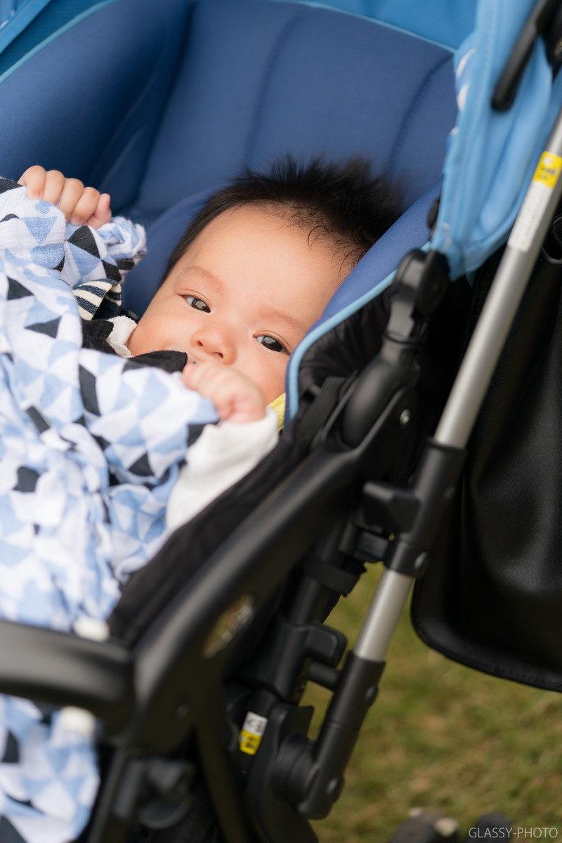 とってもキュートな赤ちゃんと目が合いました
